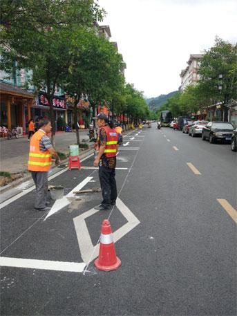 湖南张家界道路智能停车地磁解决方案